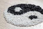 web hosting DreamHost yin yang