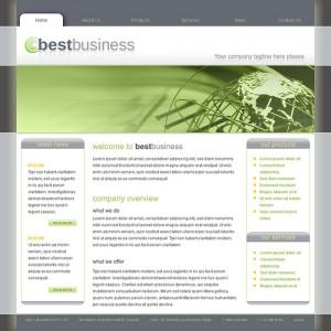 User Friendly Site Design