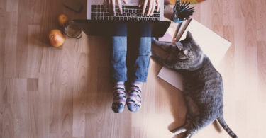 stock image - view from above person sitting on floor with laptop, cat nearby