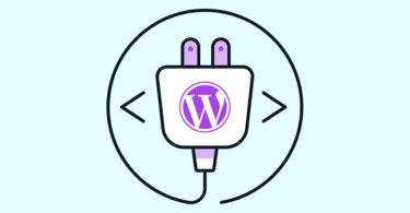 wordpress plugin illustration