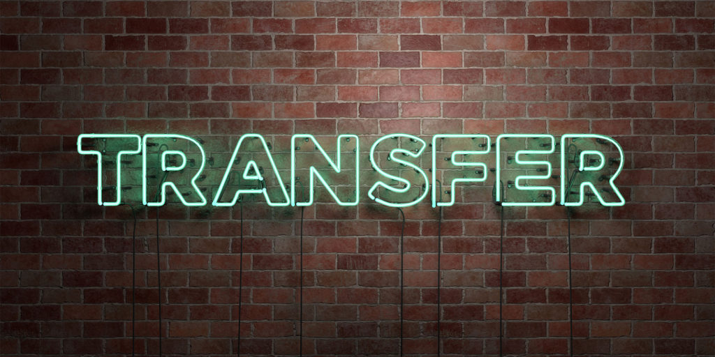 domain transfer registration tips