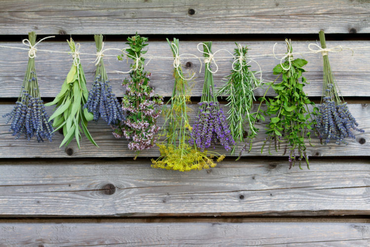 Growing an Herbal Remedy Empire, One Website at a Time thumbnail