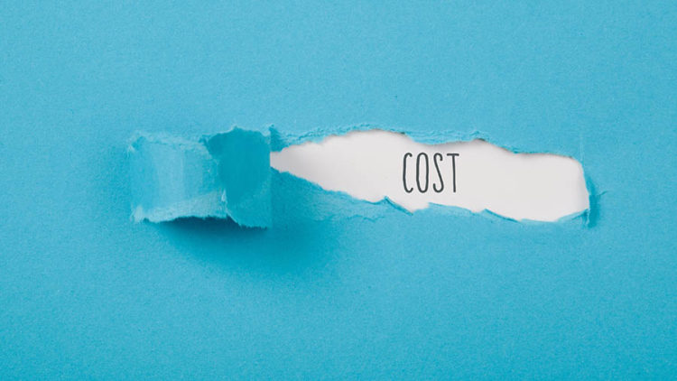 The (Many) Hidden Costs of Insanely Cheap Domains thumbnail
