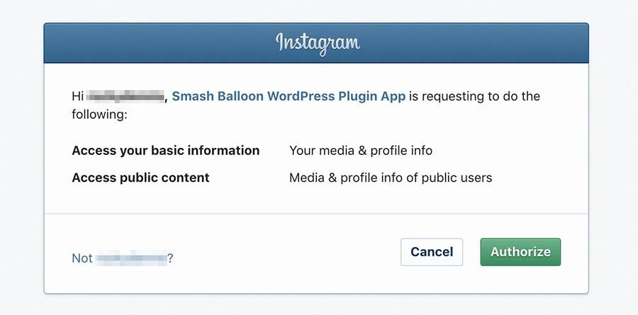 Authorizing the Instagram Feed plugin.