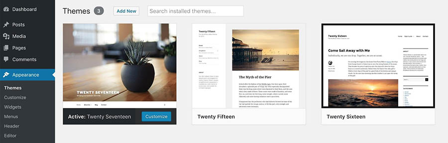 Installed WordPress themes.