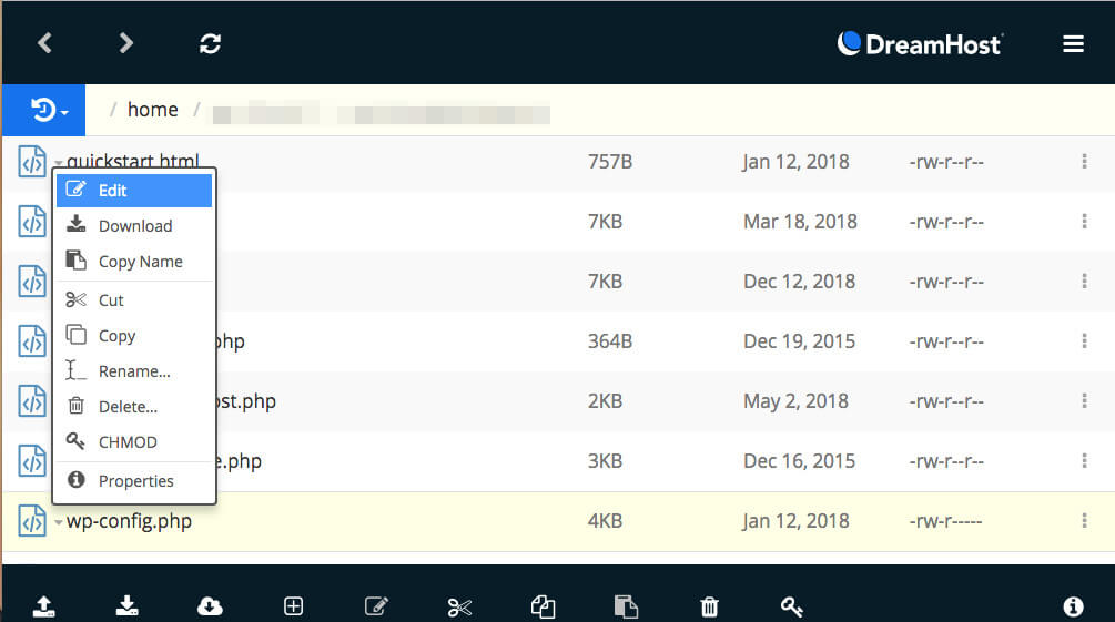 Editing a WordPress file in WebFTP.